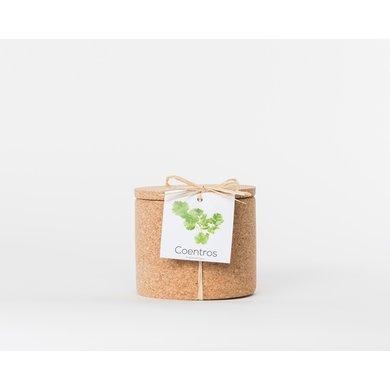 Life in a bag Life in a bag spice jar cork coriander