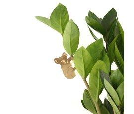 Another Studio Plant beestje koala