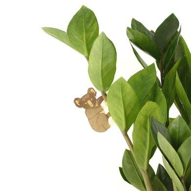 Another Studio Plant beestje bush baby
