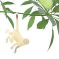 Another Studio Plant bug spider monkey