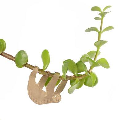 Another Studio Plant bug animal sloth