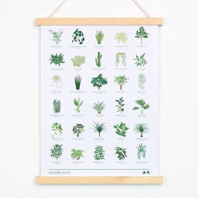Another Studio Houseplant print