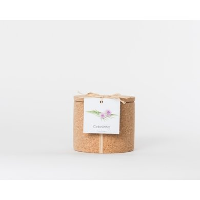 Life in a bag Life in a bag spice jar cork chives