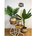 Trends and Trade Rattan mirror black
