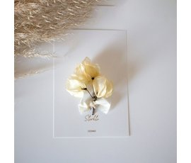 Cocoomade Cocoomade flowercard sterkte