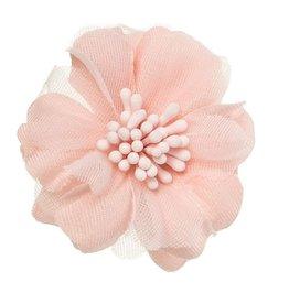 Siena Speld bloem oudroze