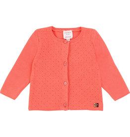 Carrément Beau Gilet tricot abrikoos