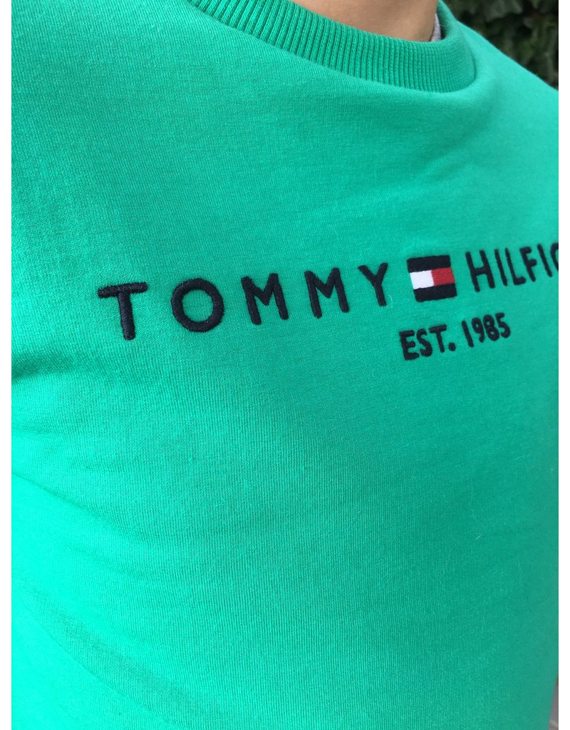 TOMMY HILFIGER Sweater essential cosmic green