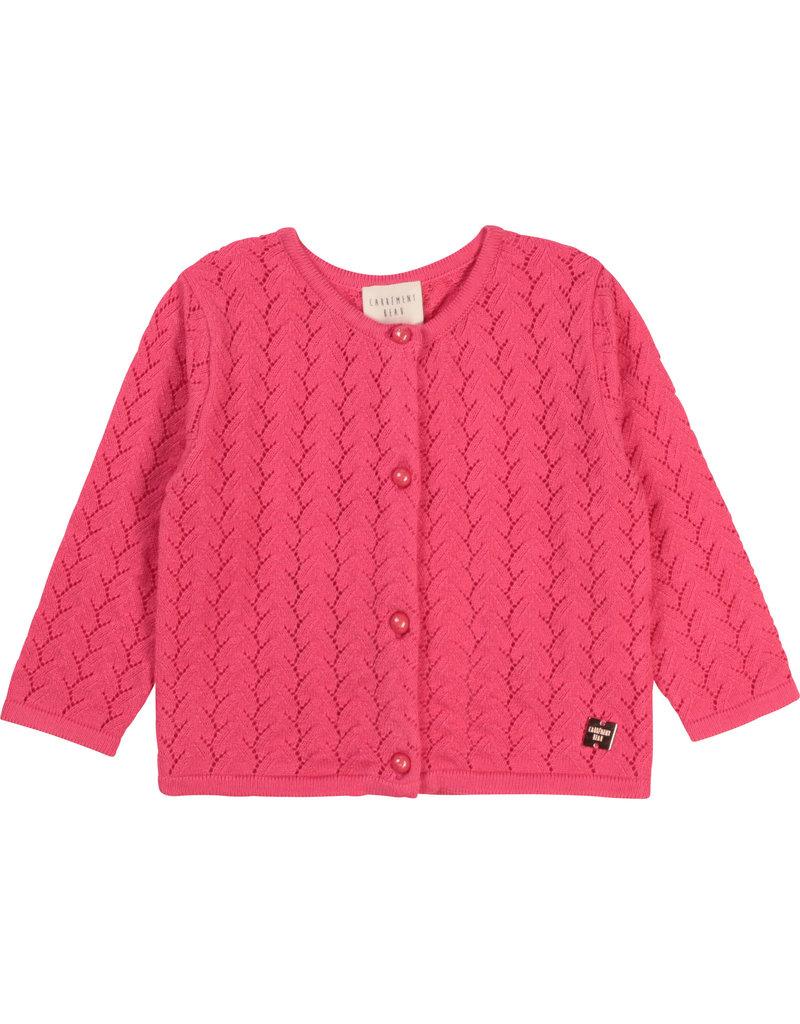 Carrément Beau Cardigan tricot camelia