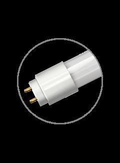 T8 120cm LED Buis 18W | 6400K Koud Wit