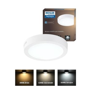 LED Downlight | 24W | Verwisselbare kleur [3 in 1] | Opbouw Plafondlamp Rond