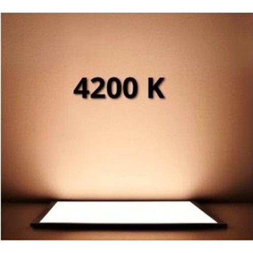 LED Paneel 60x60cm 4200K 40W | Dag licht [High lumen]
