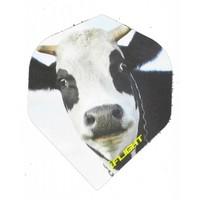 Pentathlon iFlight - Cow