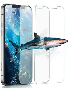 Ntech iPhone 12 Pro Max Screenprotector 2 Pack / Tempered Glass