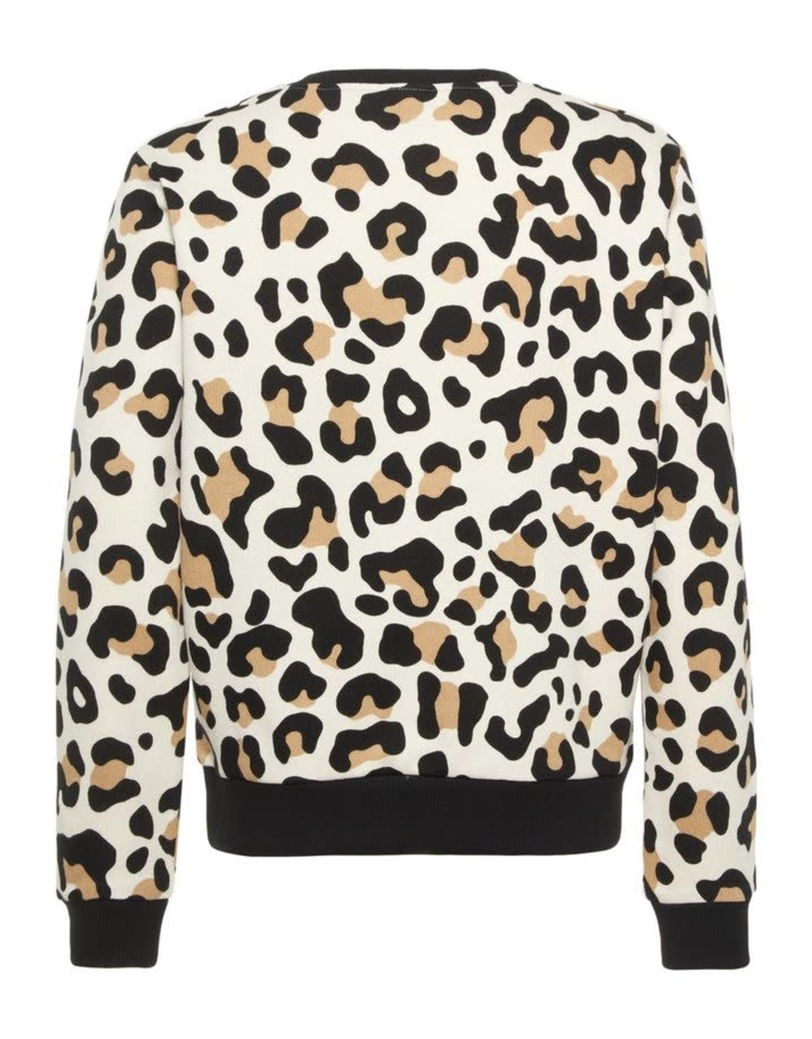 Name It Trui Met Luipaardprint (2 kleuren)