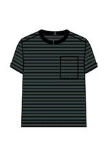 Name It Groen-blauw gestreepte t-shirt uit bio katoen - LAATSTE MAAT 116