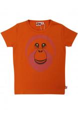 Dyr Oranje t-shirt met orang oetang