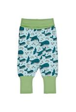Meyadey Speelbroek met walvissen