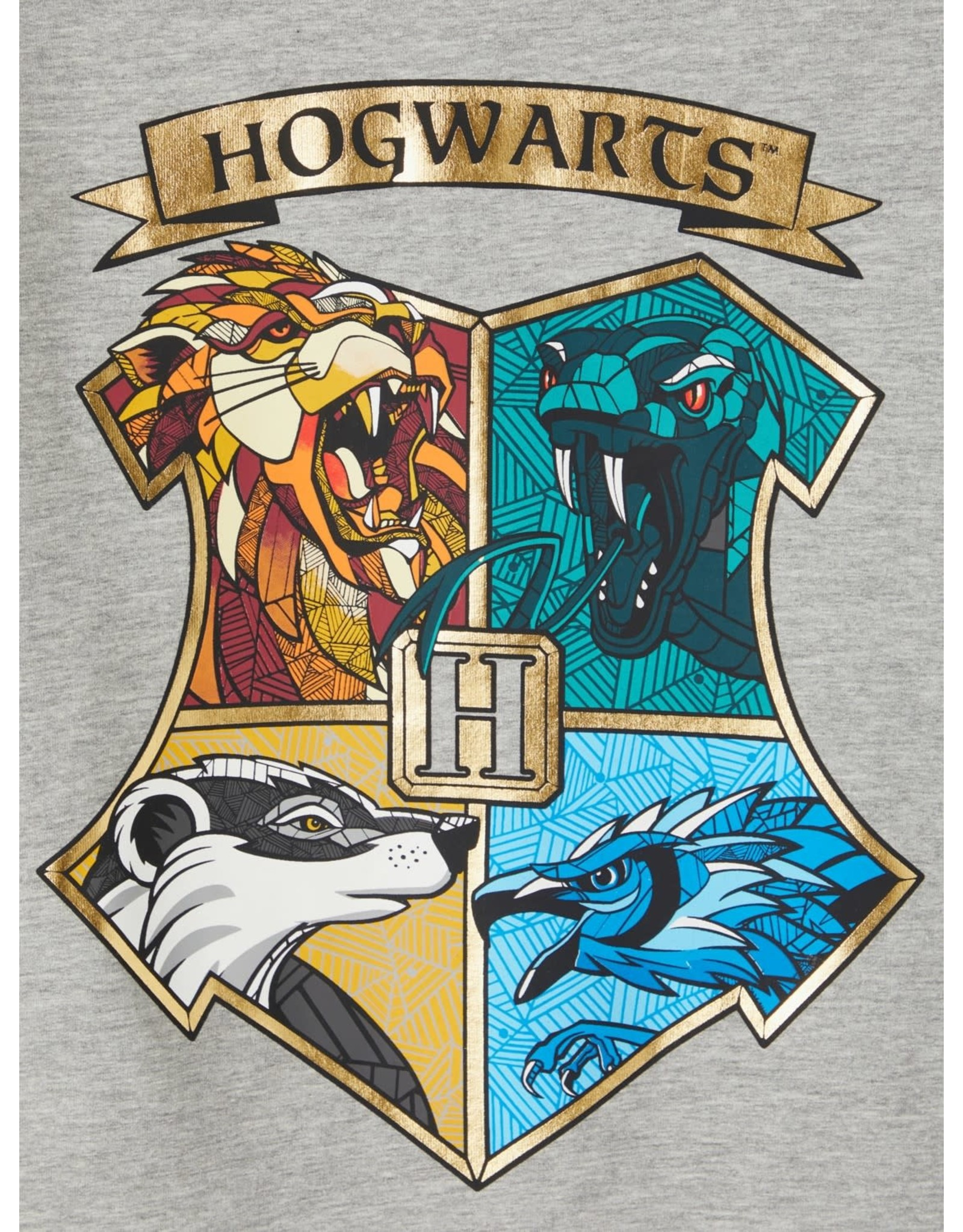 Name It Grijze trui met Harry Potter print