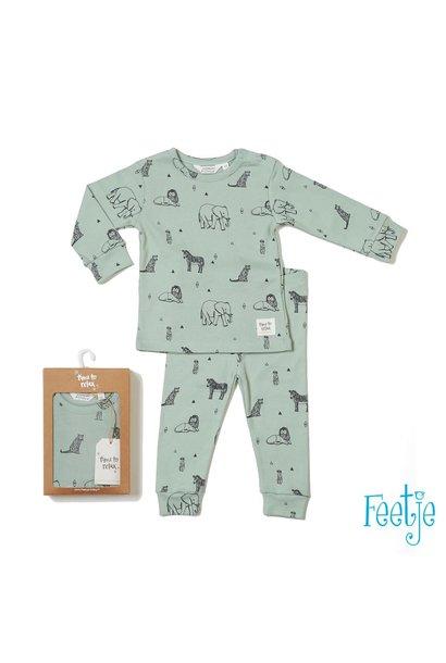 Feetje Jongens Pyjama 50500035
