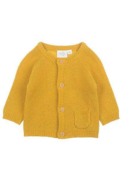 Feetje Baby Gebreid Vest I'm New Here 513.00373