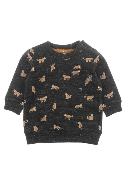 Feetje Jongens Sweater AOP Hi There 516.01564