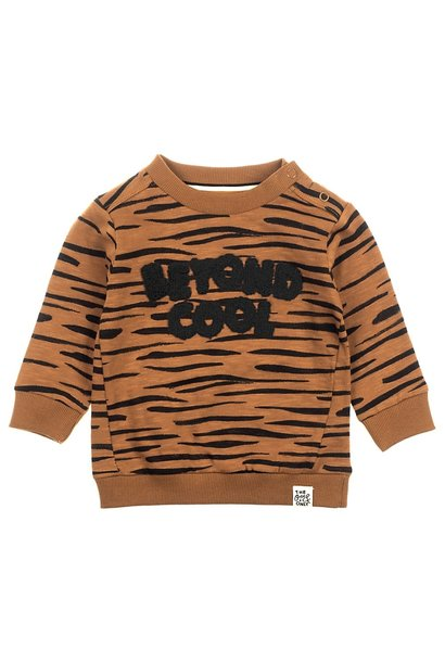 Feetje Jongens Sweater Cool Spacelab 516.01594