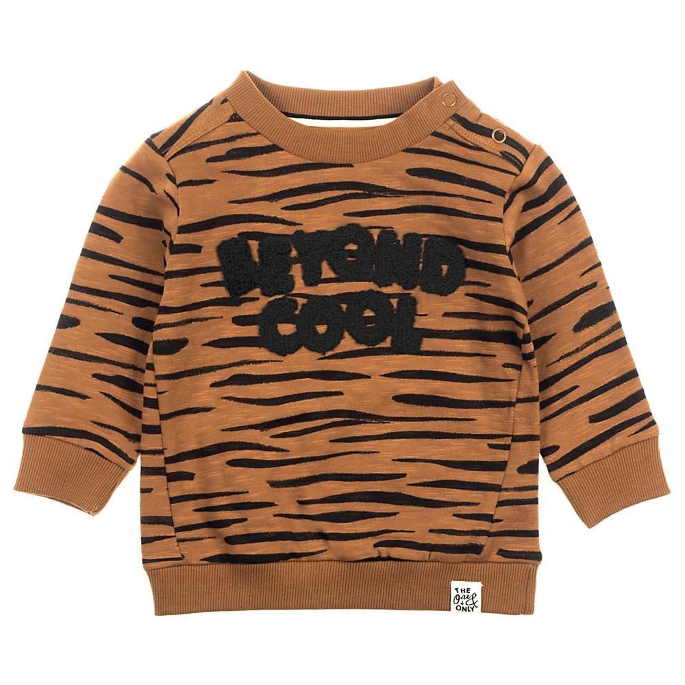 Feetje Jongens Sweater Cool Spacelab 516.01594-1