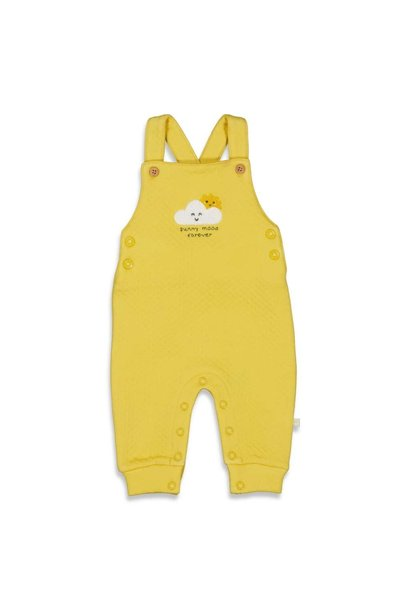 Feetje Baby Tuinbroek Sunny Mood 52000053
