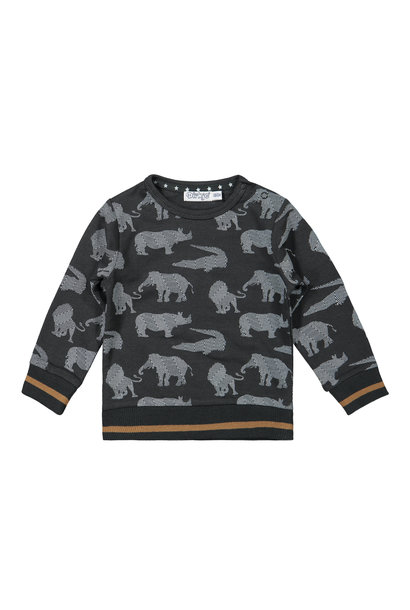 Dirkje Jongens Sweater F40525-35