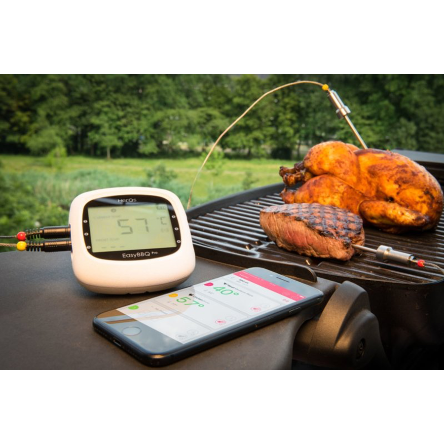 HerQs Thermometer - Easy BBQ Pro-2