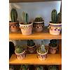 Cactus S