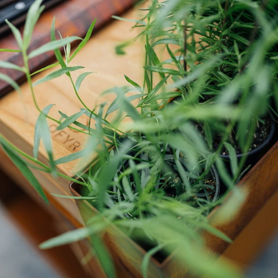 Ofyr Herb Garden Bench Black-4