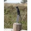 Black Fox Black Fox RVS Survival Knife
