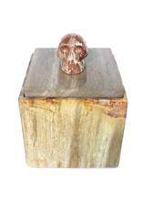 Amanda Jongsma unique piece petrified wood box with multicolored skull