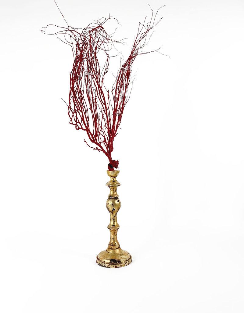 Marieke Ariëns Interior Objects Red sea fan on gilded wooden pedestal