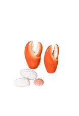 Set of two crab pincers salt and pepper