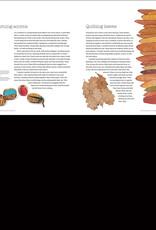 Natural Processess in Textile Art / Alice Fox