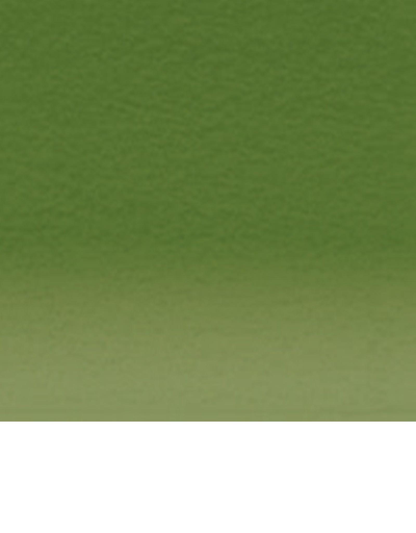 Inktense Potlood Beech Green