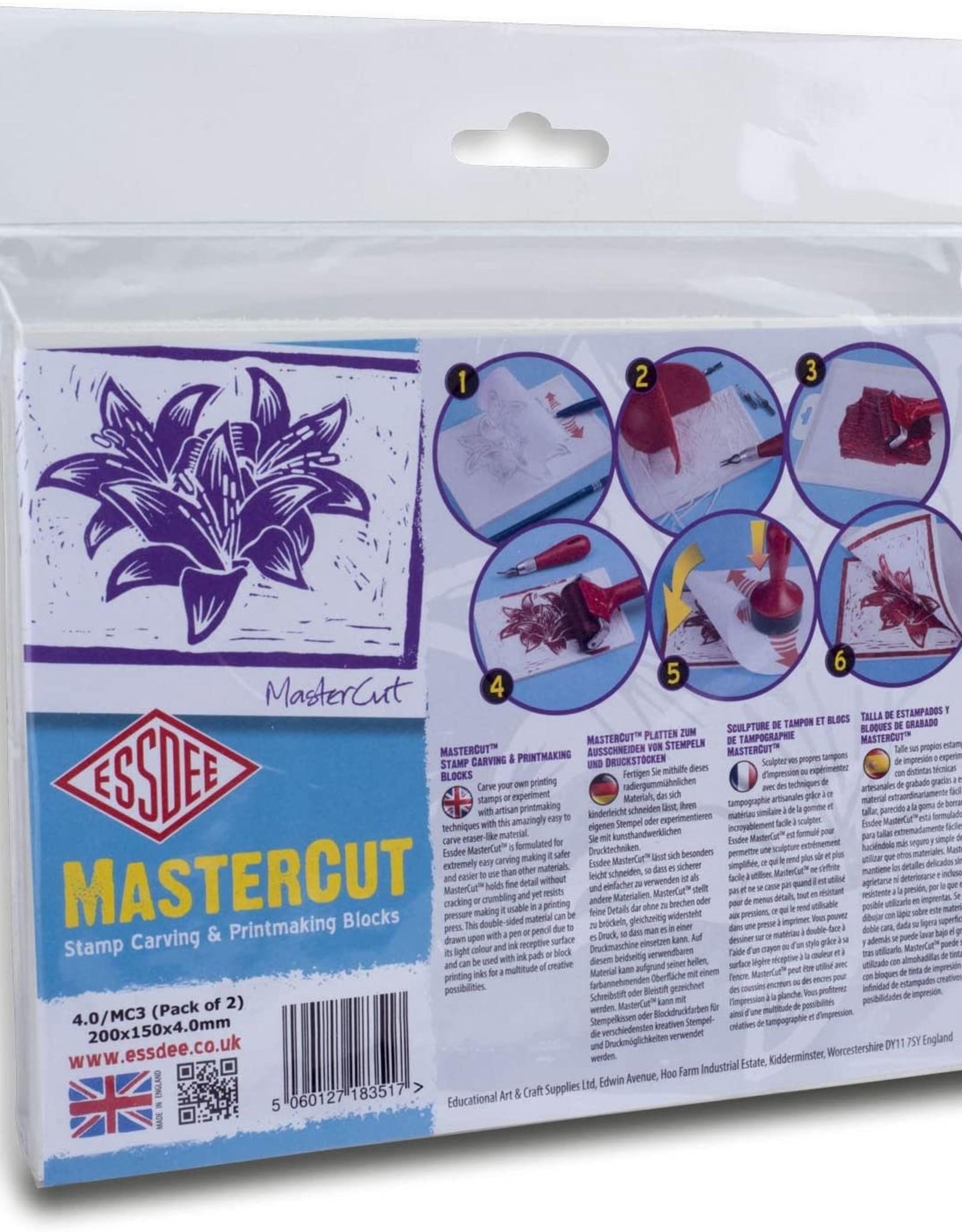 Mastercut Rechthoek 20 x 15cm 2 stuks