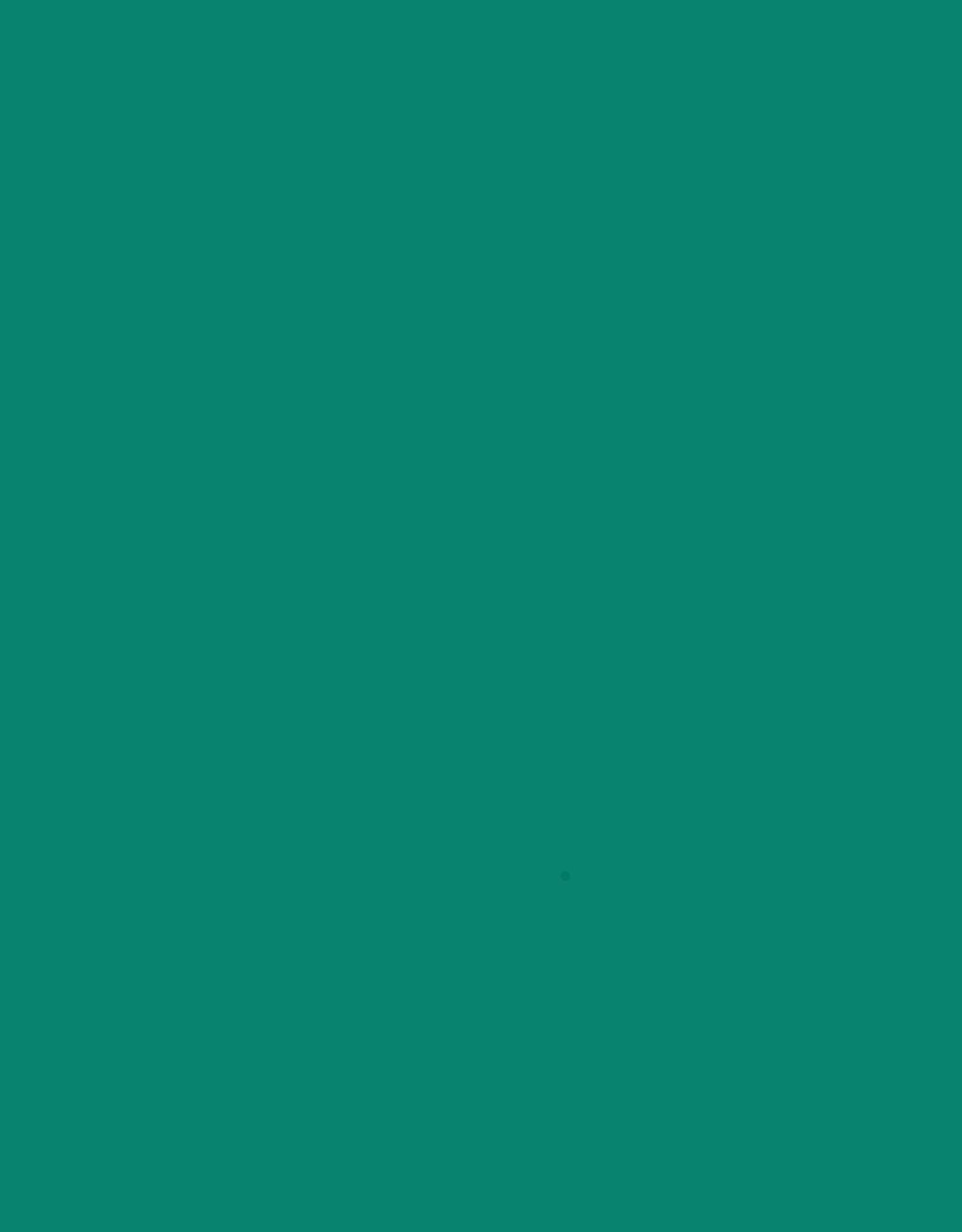 Trapsuutjies Jade Large