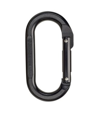 Black Diamond Black Diamond Oval Keylock Carabiner