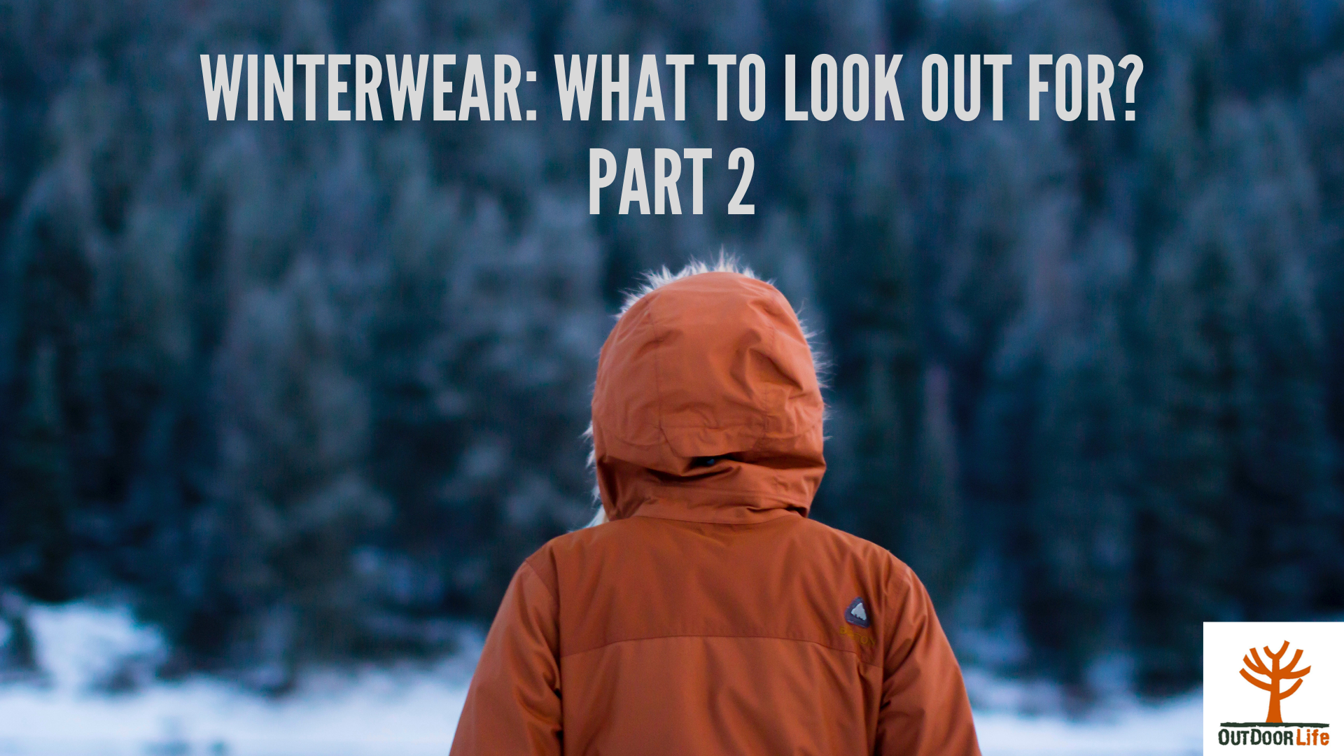 The  Beginner's Guide to Winterwear Part 2