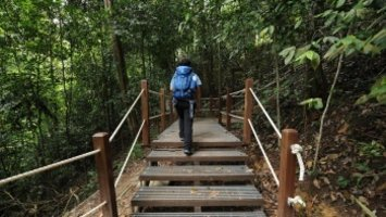 8 Types of Hikers You'd Meet In Singapore