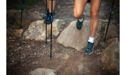 Trekking and Hiking Pole