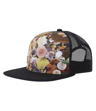 HIPPYTREE Hippytree Fungi Hat