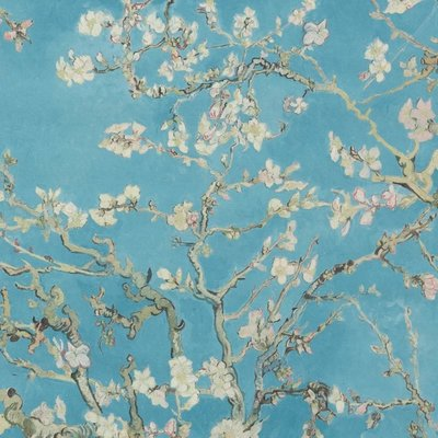 BN Wallcoverings BN Van Gogh 2 behang Amandelbloesem 17140