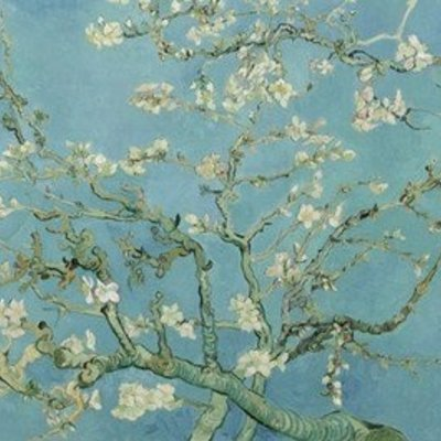 BN Wallcoverings BN van Gogh 2 Digital 200330 Almond Blossom