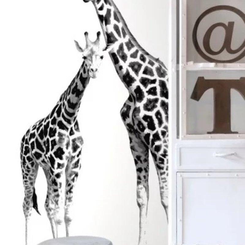 Esta for kids Esta Home Everybody Bonjour PhotowallXL Giraffen 158701