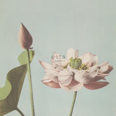 Esta Home Esta Home Blush PhotowallXL Lotus Flower 158890